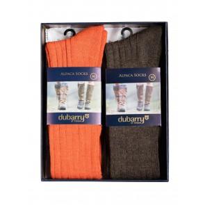 Dubarry Lissadell Alpaca Sock Gift Set