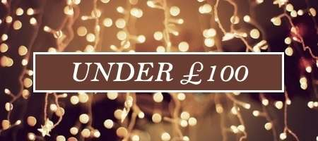 Christmas Gifts for her under £100