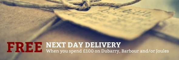 Free next day delivery offer